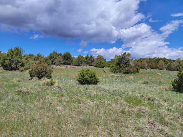 TBD Navajo Ranch Resorts #2 #65, Walsenburg, CO 81089 (MLS #21-490) :: Bachman & Associates