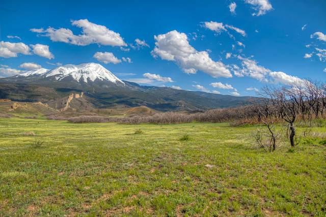 Raspberry Mountain Ranch #7, La Veta, CO 81055 (MLS #21-532) :: Bachman & Associates