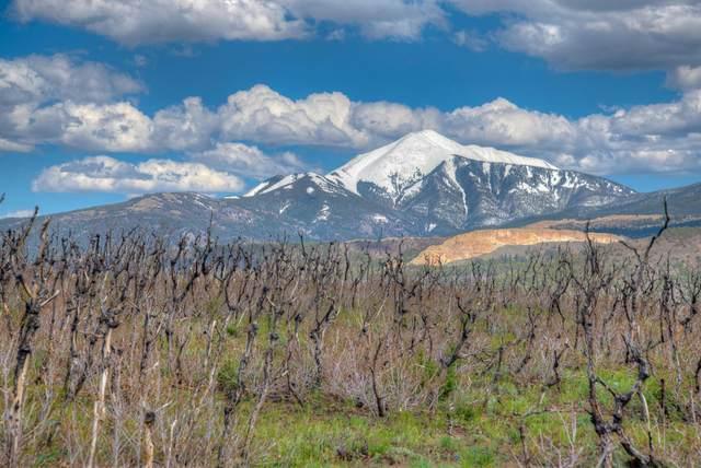 Raspberry Mountain Ranch #8, La Veta, CO 81055 (MLS #21-533) :: Bachman & Associates