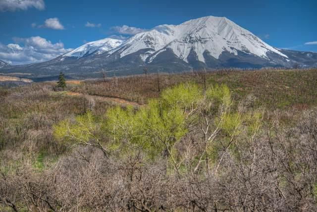 Raspberry Mountain Ranch #18, La Veta, CO 81055 (MLS #21-534) :: Bachman & Associates