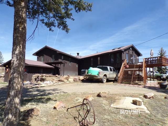 14502 County Rd 31.9, Weston, CO 81091 (MLS #21-548) :: Bachman & Associates