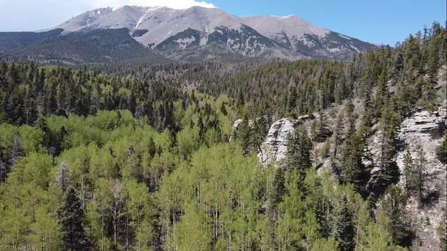 Tbd Mt Elbert Drive #34, Aguilar, CO 81020 (MLS #21-552) :: Bachman & Associates