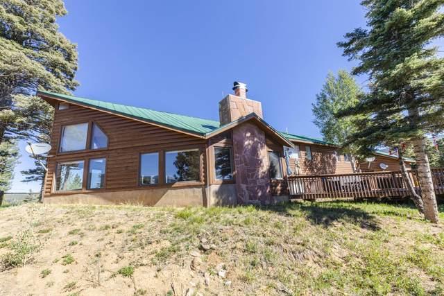 21492 Riley Lane, Weston, CO 81091 (MLS #21-575) :: Bachman & Associates