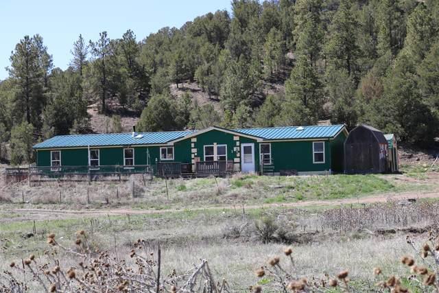 25902 County Road 30.1, Bon Carbo, CO 81024 (MLS #21-6) :: Bachman & Associates