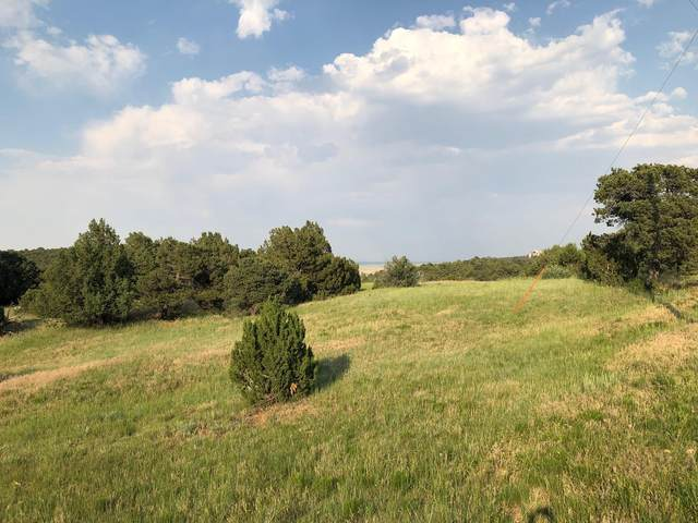 Rugby Mines Lot 90, Aguilar, CO 81020 (MLS #21-647) :: Bachman & Associates