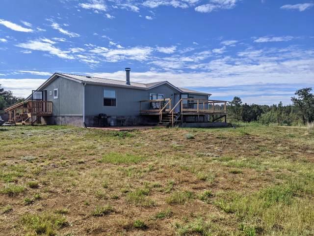 18500 Ponderosa Drive, Weston, CO 81091 (MLS #21-693) :: Bachman & Associates