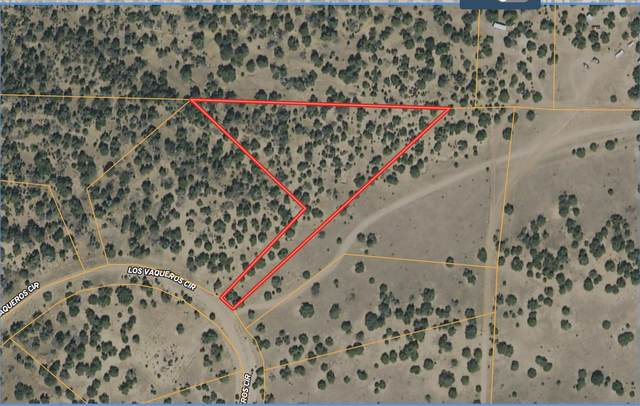 TBD Los Vaqueros Circle #908, Walsenburg, CO 81089 (MLS #21-698) :: Bachman & Associates
