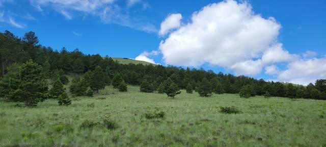 Cap Rock Ranch Road #9, canon city, CO 81212 (MLS #21-702) :: Bachman & Associates