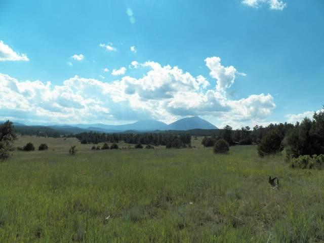 24133 Trujillo Creek Ranch Rd, Aguilar, CO 81020 (MLS #21-719) :: Bachman & Associates