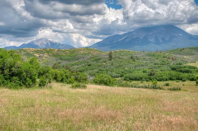 TBD Spanish Peaks Trail, La Veta, CO 81055 (MLS #21-720) :: Bachman & Associates