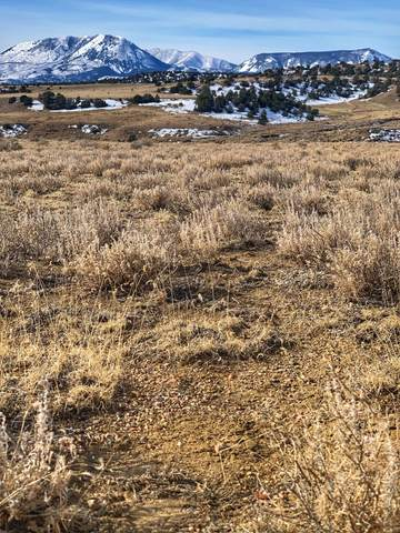Turkey Creek Ranches #12, Gardner, CO 81040 (MLS #21-74) :: Bachman & Associates