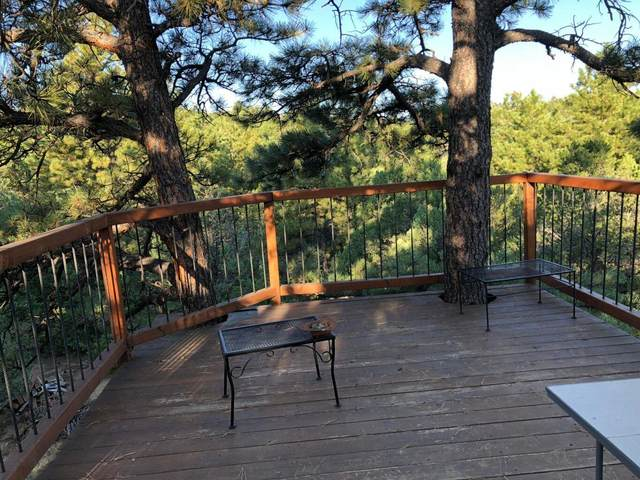 158 Blackhawk Ranch, Aguilar, CO 81020 (MLS #21-782) :: Bachman & Associates