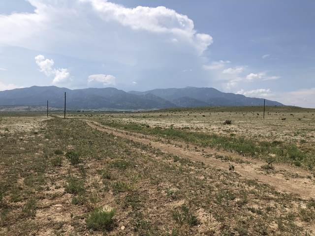 14 Colorado Buffalo Ranch, Walsenburg, CO 81089 (MLS #21-816) :: Bachman & Associates