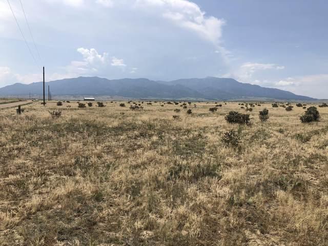 39 Colorado Buffalo Ranch, Walsenburg, CO 81089 (MLS #21-817) :: Bachman & Associates