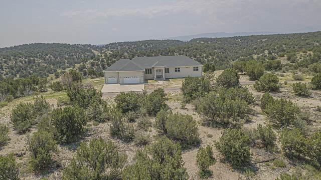 7608 Lakeview Drive, Pueblo, CO 81005 (MLS #21-830) :: Bachman & Associates