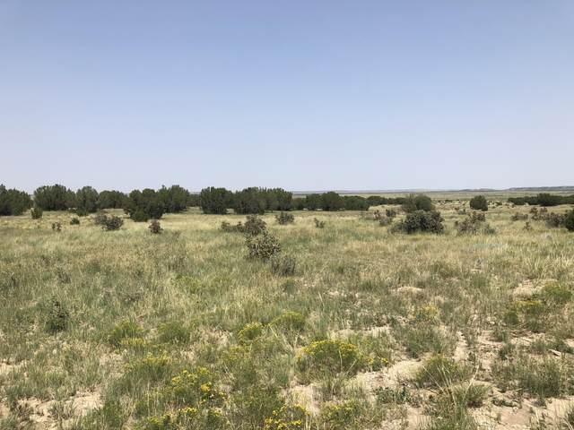 Lot 9 Long Horn Ranch Phase II, Model, CO 81059 (MLS #21-912) :: Bachman & Associates