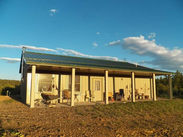 24575 Parsil Canyon Road, Aguilar, CO 81020 (MLS #21-913) :: Bachman & Associates