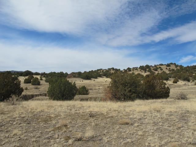 Black Hills Ranch Lot 48, Trinidad, CO 81082 (MLS #14-196) :: Big Frontier Group of Bachman & Associates