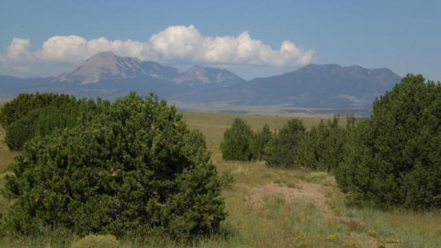 Lot 71 River Ridge Ranch, Walsenburg, CO 81089 (MLS #17-1264) :: Big Frontier Group of Bachman & Associates