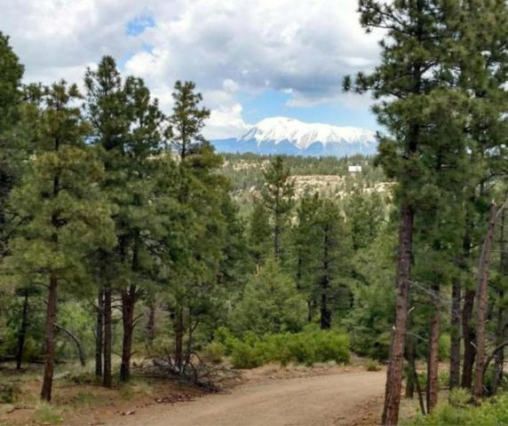 Timber Ridge Tracts 30, 31, Weston, CO 81091 (MLS #18-1266) :: Big Frontier Group of Bachman & Associates