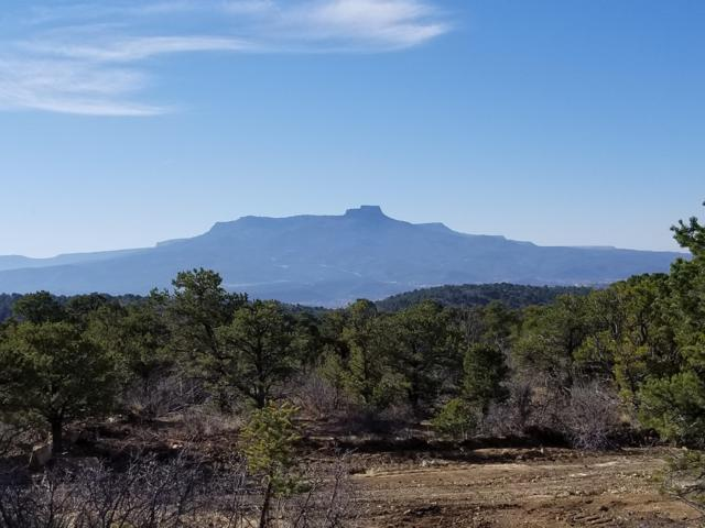 40 Rancho Verde, Trinidad, CO 81082 (MLS #18-430) :: Big Frontier Group of Bachman & Associates