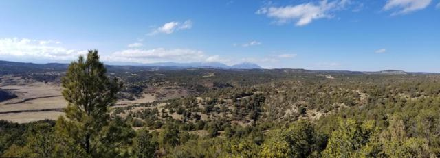 TBD Burro Canyon, Trinidad, CO 81082 (MLS #18-542) :: Sarah Manshel of Southern Colorado Realty