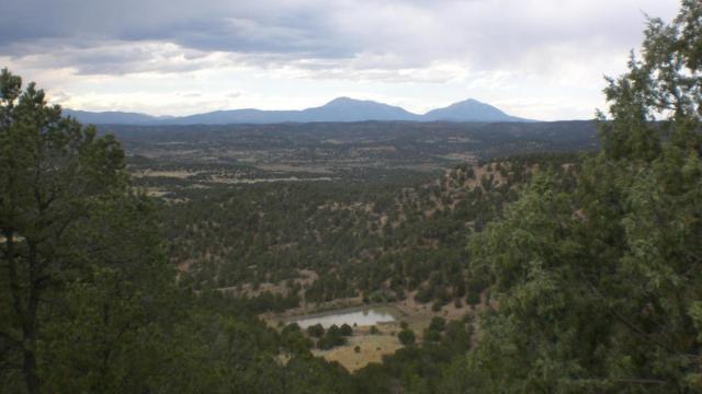 26701 Madrid Canyon Rd Lot 27, Trinidad, CO 81082 (MLS #18-565) :: Sarah Manshel of Southern Colorado Realty