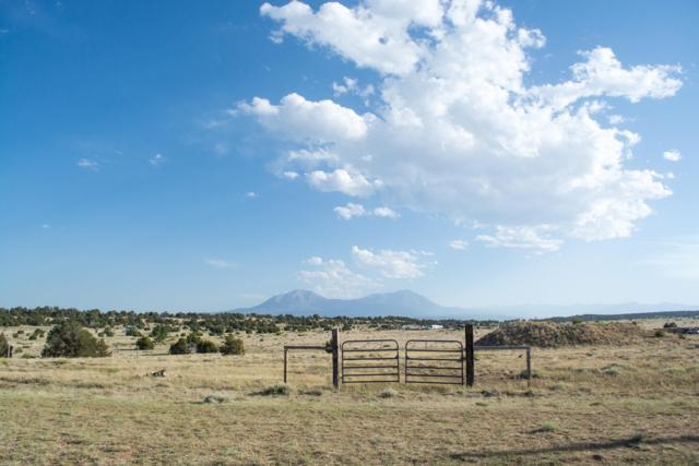 Greenhorn Villiage Tr #1 Lot 158, Walsenburg, CO 81089 (MLS #18-691) :: Bachman & Associates