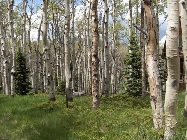 Aspen Circle Lot #63  Filing, Cuchara, CO 81055 (MLS #18-701) :: Sarah Manshel of Southern Colorado Realty