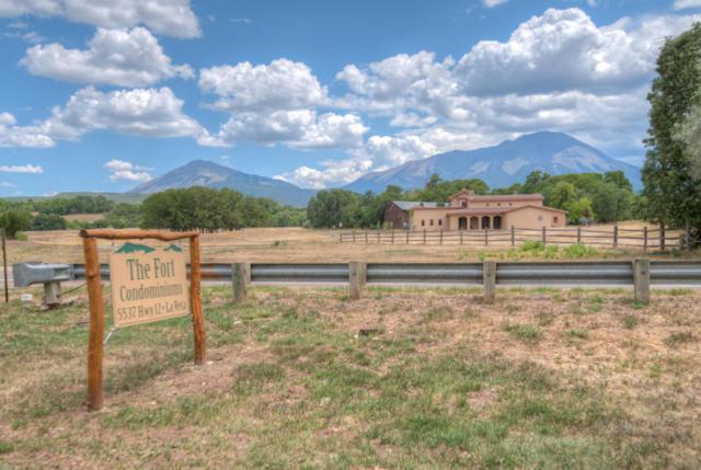 5537 Hwy 12 1-B, LaVeta, CO 81089 (MLS #18-702) :: Sarah Manshel of Southern Colorado Realty