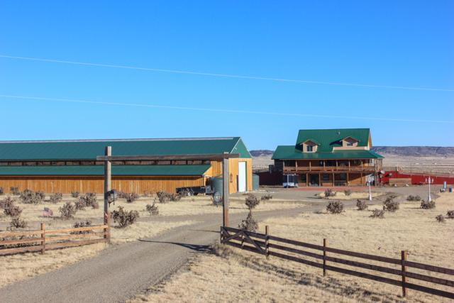 20000 Walking Stick Rd, Trinidad, CO 81082 (MLS #18-816) :: Big Frontier Group of Bachman & Associates