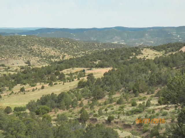 11967 Co. Rd. 43.6, Weston, CO 81091 (MLS #18-881) :: Sarah Manshel of Southern Colorado Realty