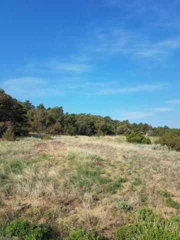 Lot 173 Navajo Estates, Walsenburg, CO 81089 (MLS #18-961) :: Big Frontier Group of Bachman & Associates