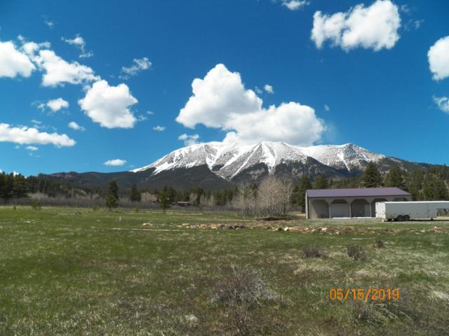 TBD Mt. Elbert Drive, Aguilar, CO 81020 (MLS #18-971) :: Big Frontier Group of Bachman & Associates