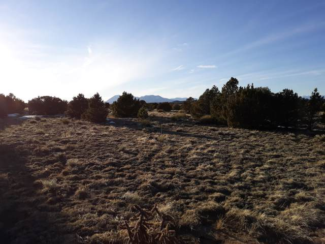 CoRd 504 Culebra Blvd. Rio Cucharas Lot #860, Walsenburg, CO 81089 (MLS #19-1290) :: Big Frontier Group of Bachman & Associates