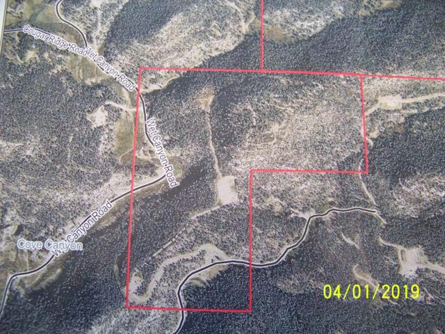 03-33-67 Wet Canyon - 120 Acres, Weston, CO 81091 (MLS #19-365) :: Big Frontier Group of Bachman & Associates
