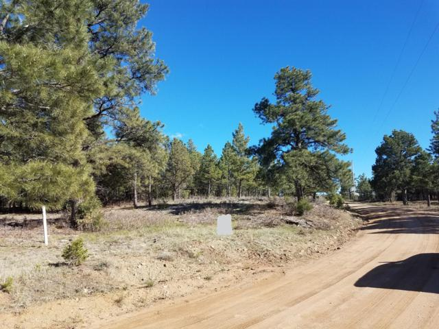 Blackhawk Ranch #104, Walsenburg, CO 81089 (MLS #19-415) :: Big Frontier Group of Bachman & Associates