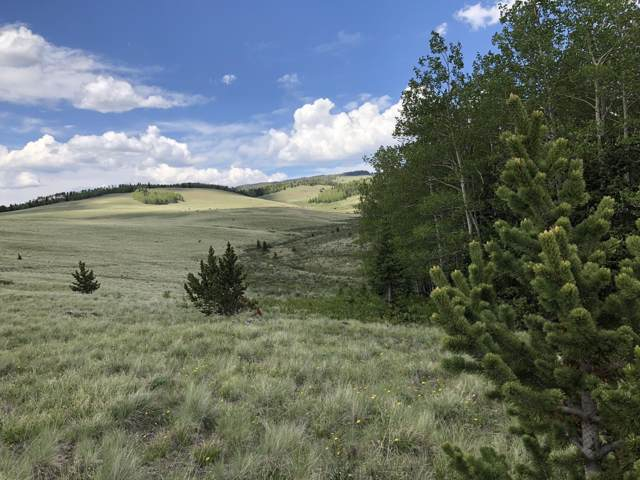 TBD Meadow Divide Rd, Gardner, CO 81040 (MLS #19-700) :: Big Frontier Group of Bachman & Associates