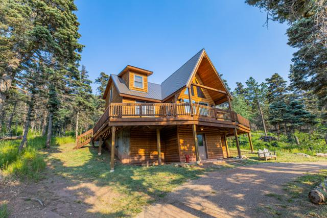252 Brook Drive, Cuchara, CO 81055 (MLS #19-773) :: Big Frontier Group of Bachman & Associates