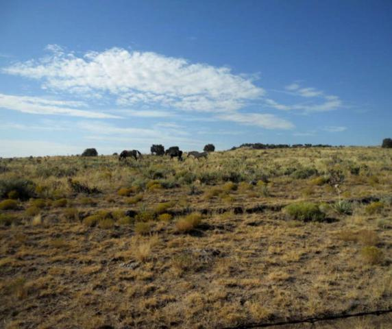 TBD Parker Road #3, Walsenburg, CO 81089 (MLS #19-96) :: Big Frontier Group of Bachman & Associates