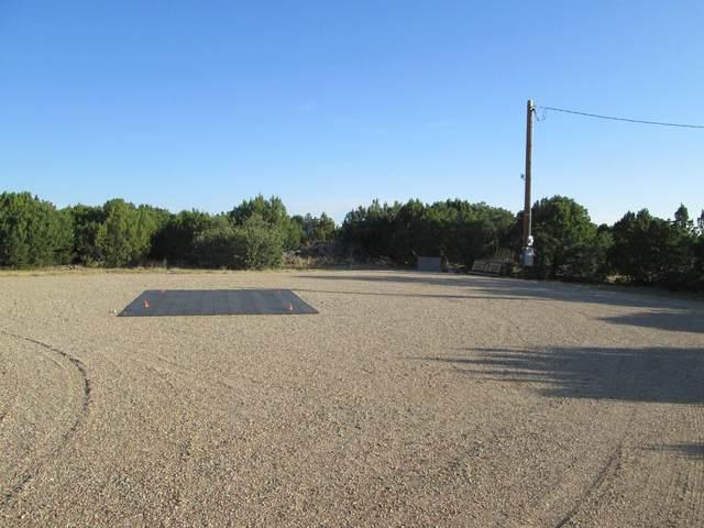 37 Silver Spurs Ranch, Walsenburg, CO 81089 (MLS #19-994) :: Bachman & Associates