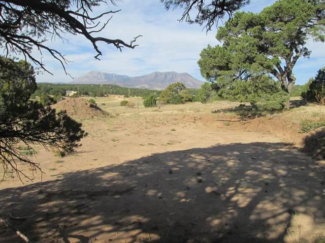 38 Navajo Ranch Resorts Filing #4, Walsenburg, CO 81089 (MLS #20-1000) :: Bachman & Associates
