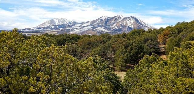 TBD Majors Ranch Phase 3 Lot 2, Walsenburg, CO 81089 (MLS #20-219) :: Bachman & Associates