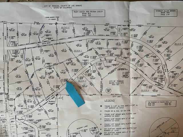 413 Memory Lane, Trinidad, CO 81082 (MLS #20-224) :: Bachman & Associates
