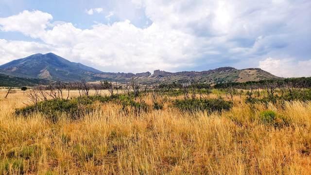 Lot 31 Majors Ranch #31, Walsenburg, CO 81089 (MLS #20-357) :: Bachman & Associates