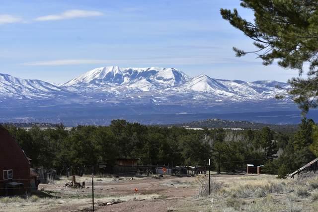 Lot 3 Silver Fox Ranches, Gardner, CO 81040 (MLS #20-404) :: Bachman & Associates