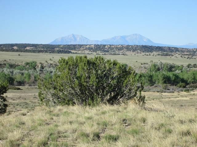 115 Ghost River Ranch, Walsenburg, CO 81089 (MLS #20-425) :: Bachman & Associates