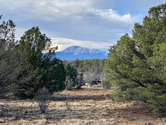 TBD Rancho La Garita #215, Weston, CO 81091 (MLS #20-954) :: Bachman & Associates