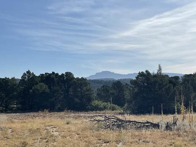 TBD Colorado Mountain Lake Estates, Trinidad, CO 81082 (MLS #21-1084) :: Bachman & Associates