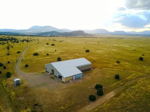 Cr 524-Majors Ranch Ph 1 Lot 8, Walsenburg, CO 81089 (MLS #21-294) :: Bachman & Associates